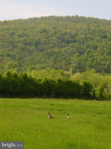 Land for Sale at Ridgeside Rd Bluemont, Virginia 20135 United States