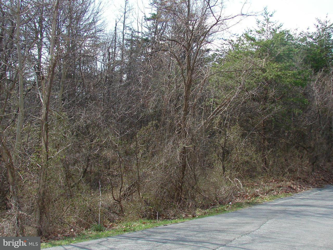 Additional photo for property listing at Meyers St  Berkeley Springs, West Virginia 25411 United States