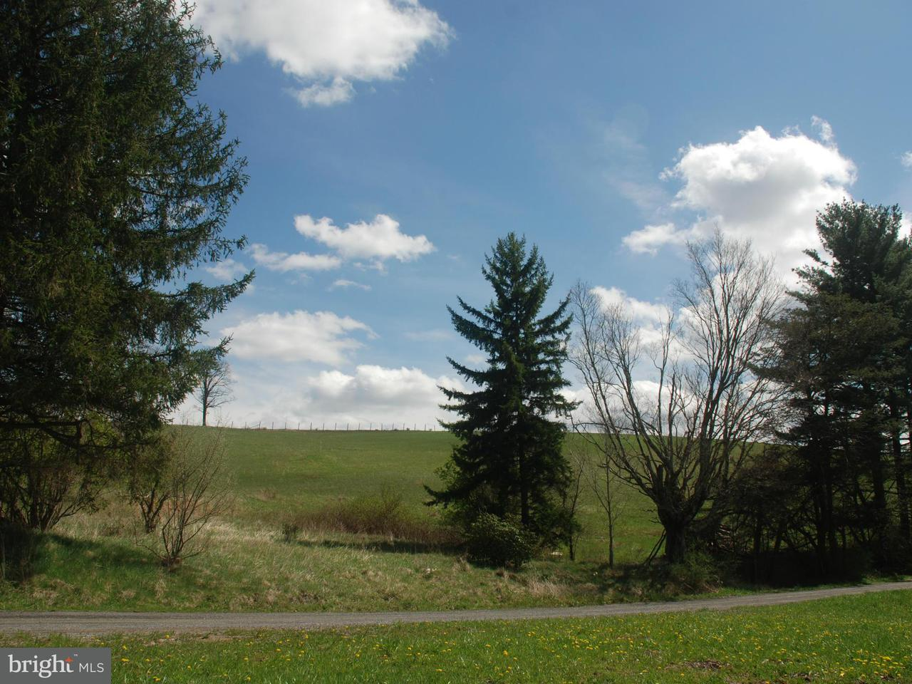 Land for Sale at Breedlove Road Eglon, West Virginia 26716 United States