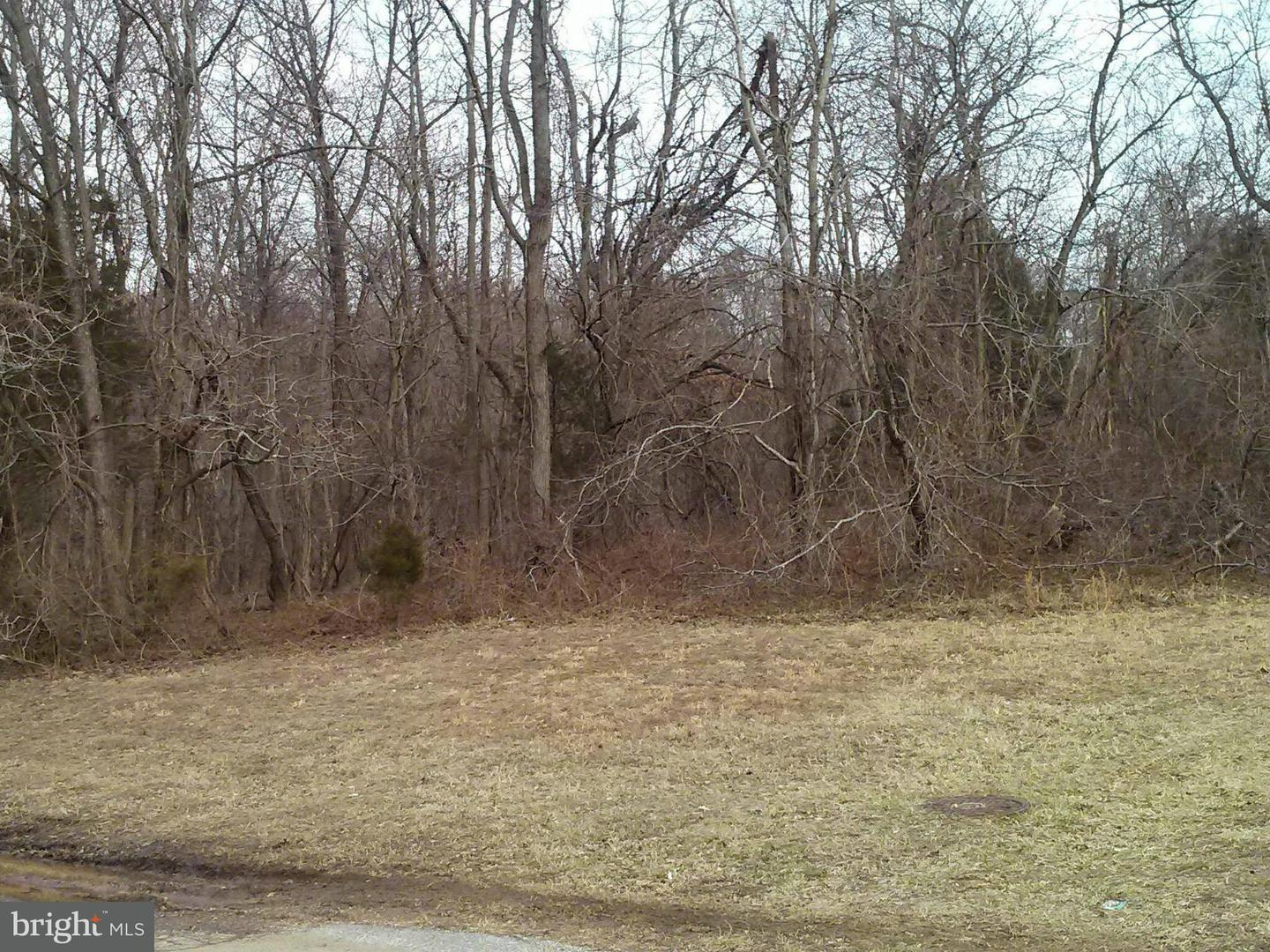 Land for Sale at 12110 Livingston Rd Fort Washington, Maryland 20744 United States
