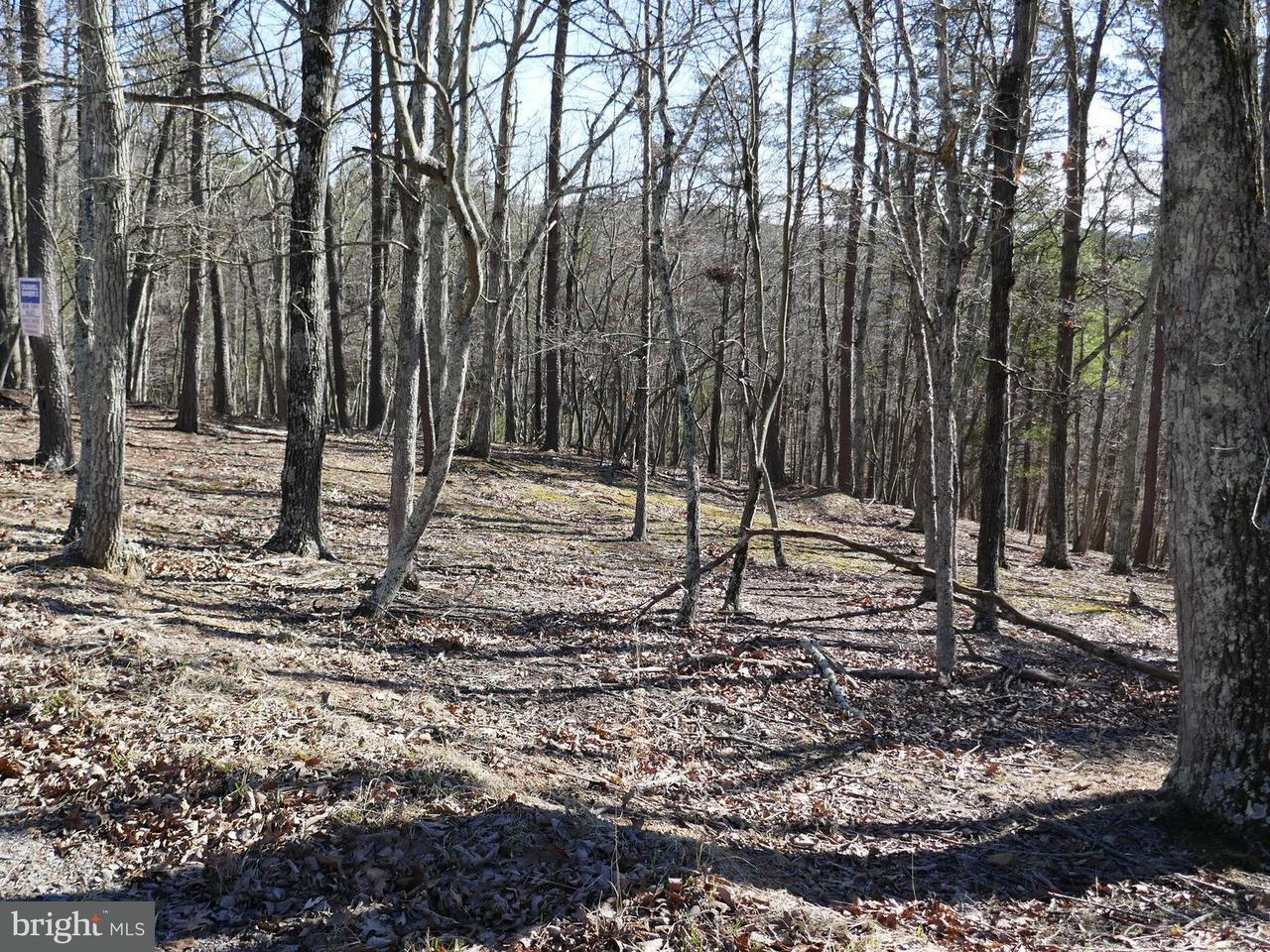 Land for Sale at 122 Crossings View Rd Bloomery, West Virginia 26817 United States