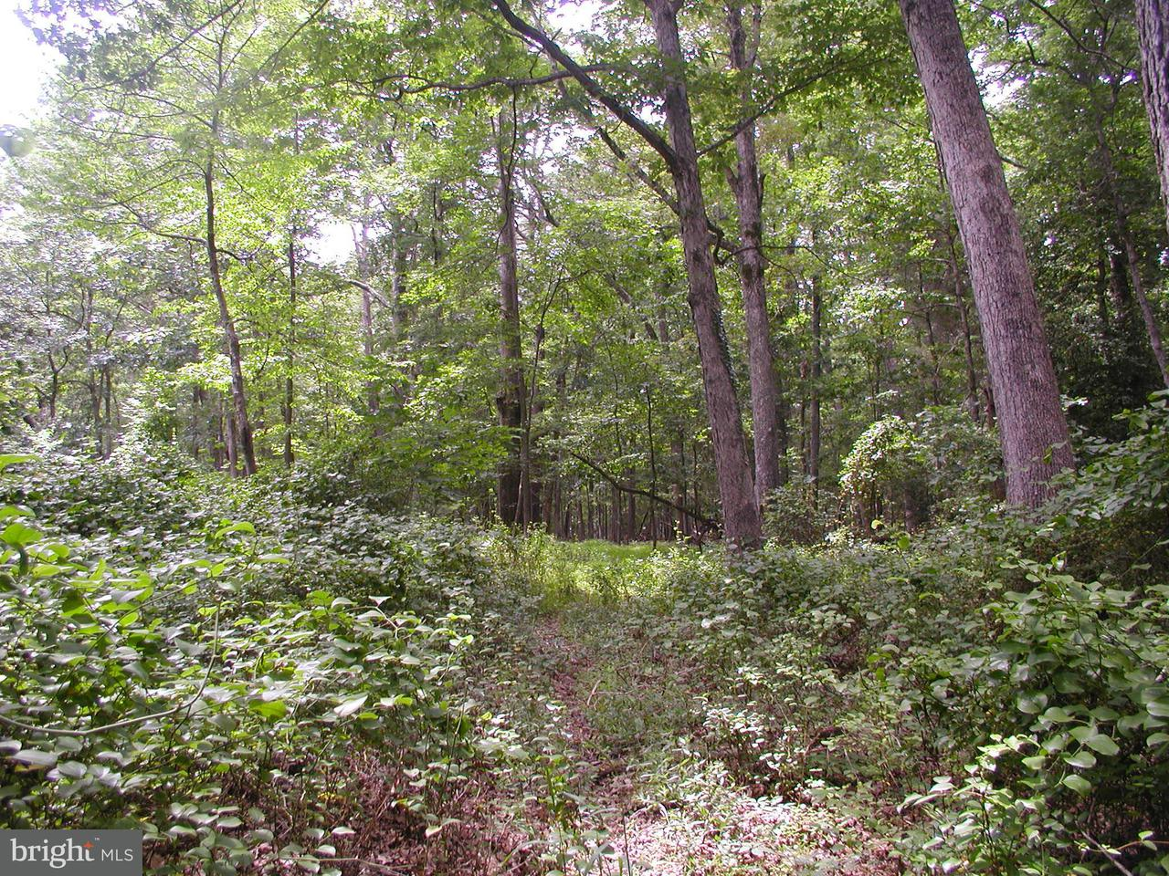 Land for Sale at 944 Leigh Mill Road 944 Leigh Mill Road Great Falls, Virginia 22066 United States