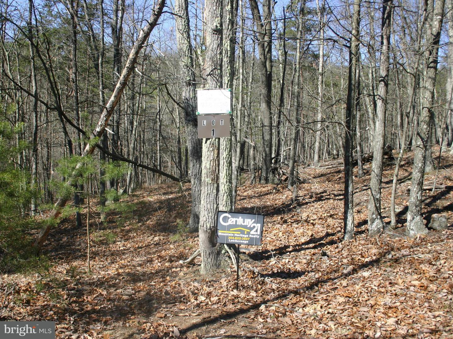 Land for Sale at Wild Cat Ln Delray, West Virginia 26714 United States
