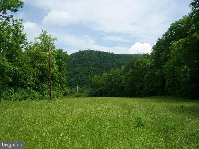 Additional photo for property listing at 40630 Rockford Road  Great Cacapon, West Virginia 25422 United States