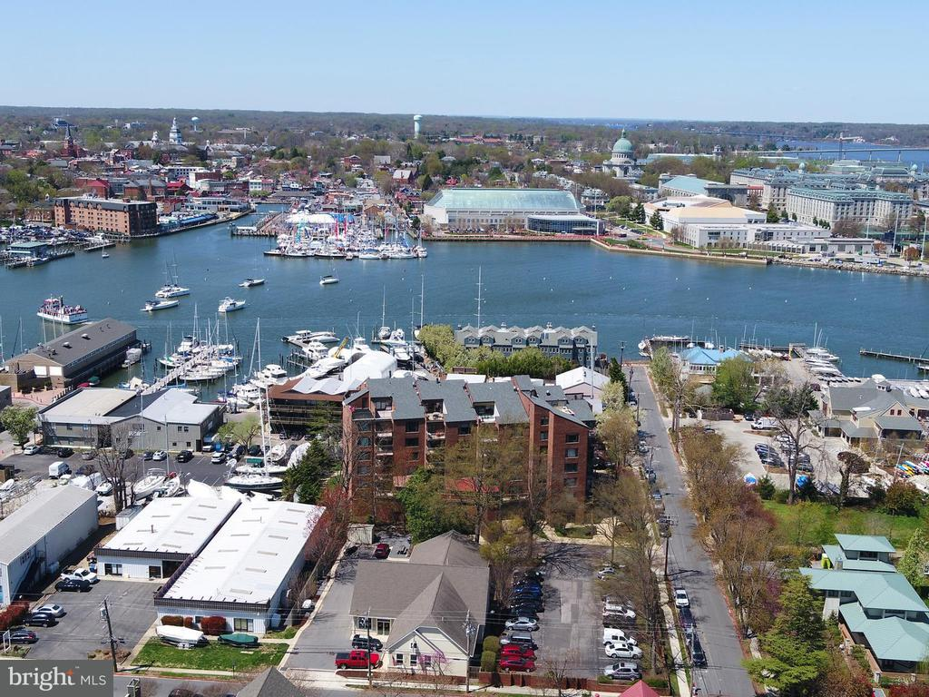 100  SEVERN AVENUE  306, one of homes for sale in Annapolis