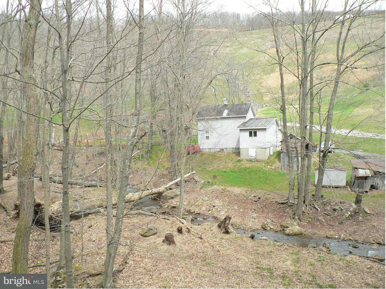 Farm for Sale at 1045 Jessie Ours Rd Maysville, West Virginia 26833 United States