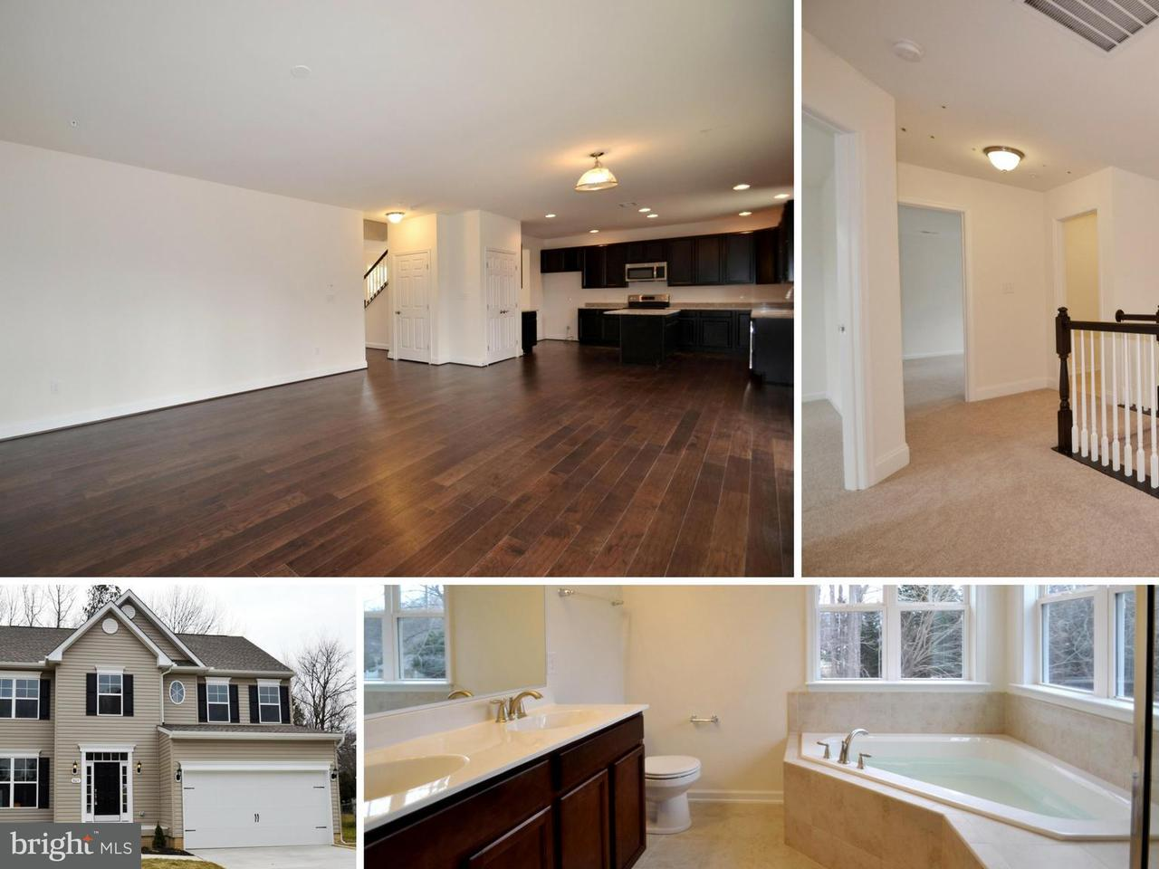 Single Family for Sale at 29761 Captain Adamouski St Easton, Maryland 21601 United States