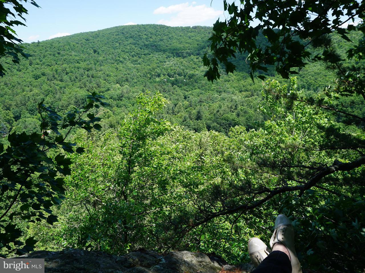 Land for Sale at Lot 5 Rabbits Foot Rd Hinton, Virginia 22831 United States