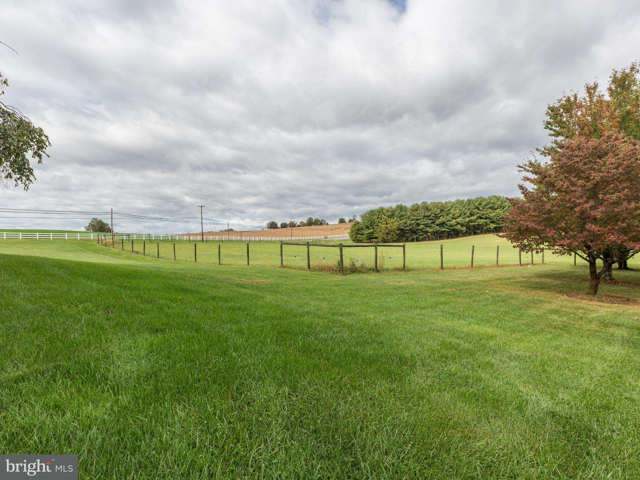 Additional photo for property listing at 19704 Toms Road 19704 Toms Road Boonsboro, Maryland 21713 Estados Unidos