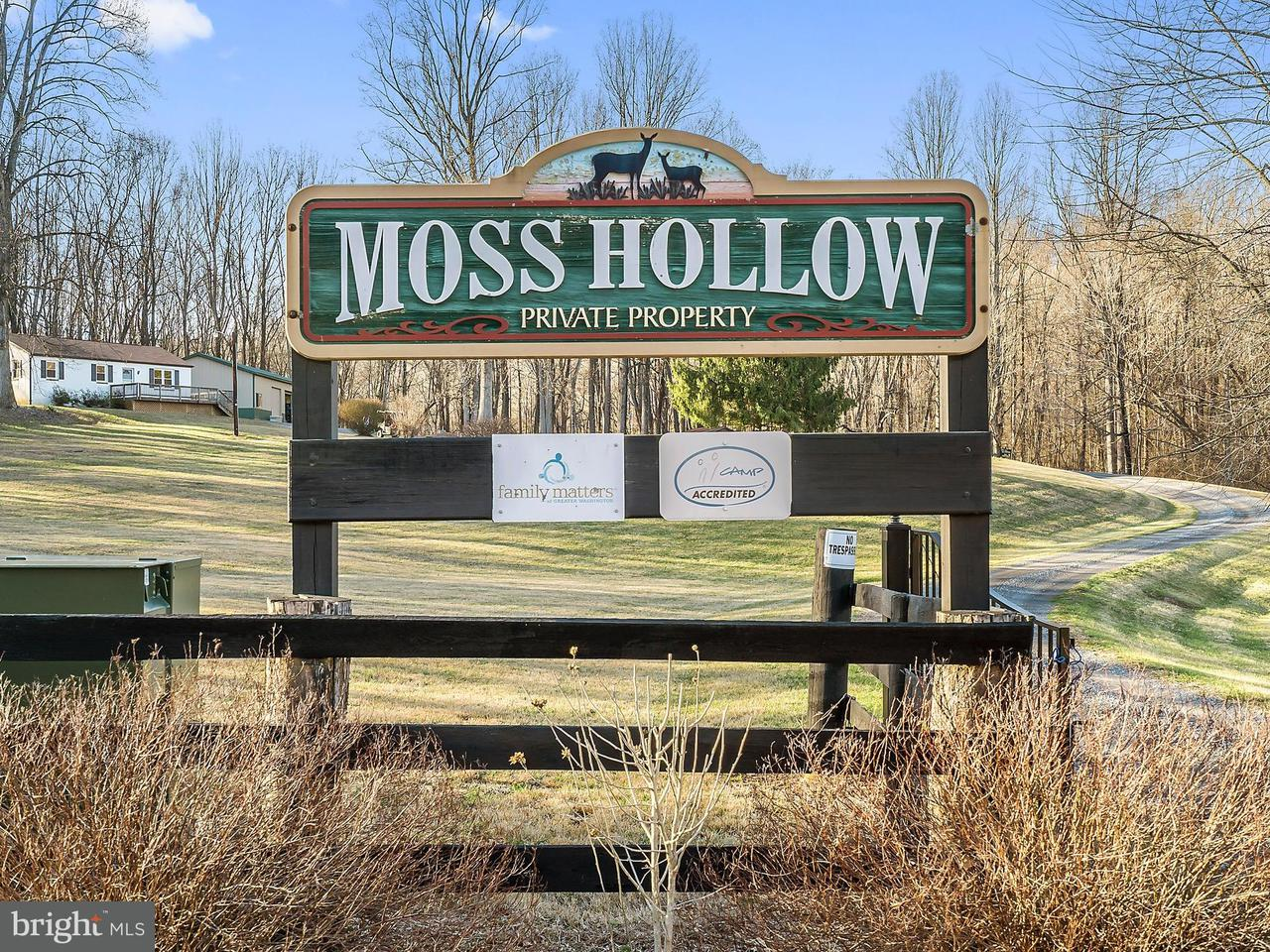 Single Family Home for Sale at 12494 Moss Hollow Road 12494 Moss Hollow Road Markham, Virginia 22643 United States