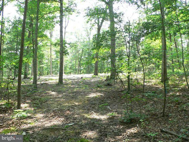 Additional photo for property listing at 0 Ridge Loop Road  Luray, Virginia 22835 United States
