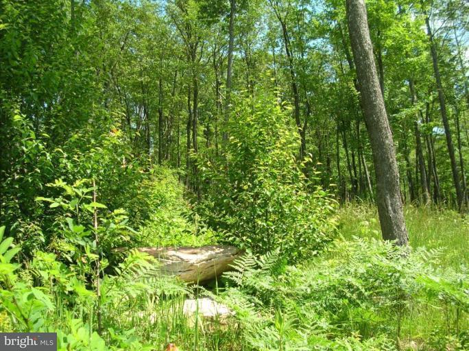 Additional photo for property listing at Birdsong Way  Mc Henry, Maryland 21541 United States