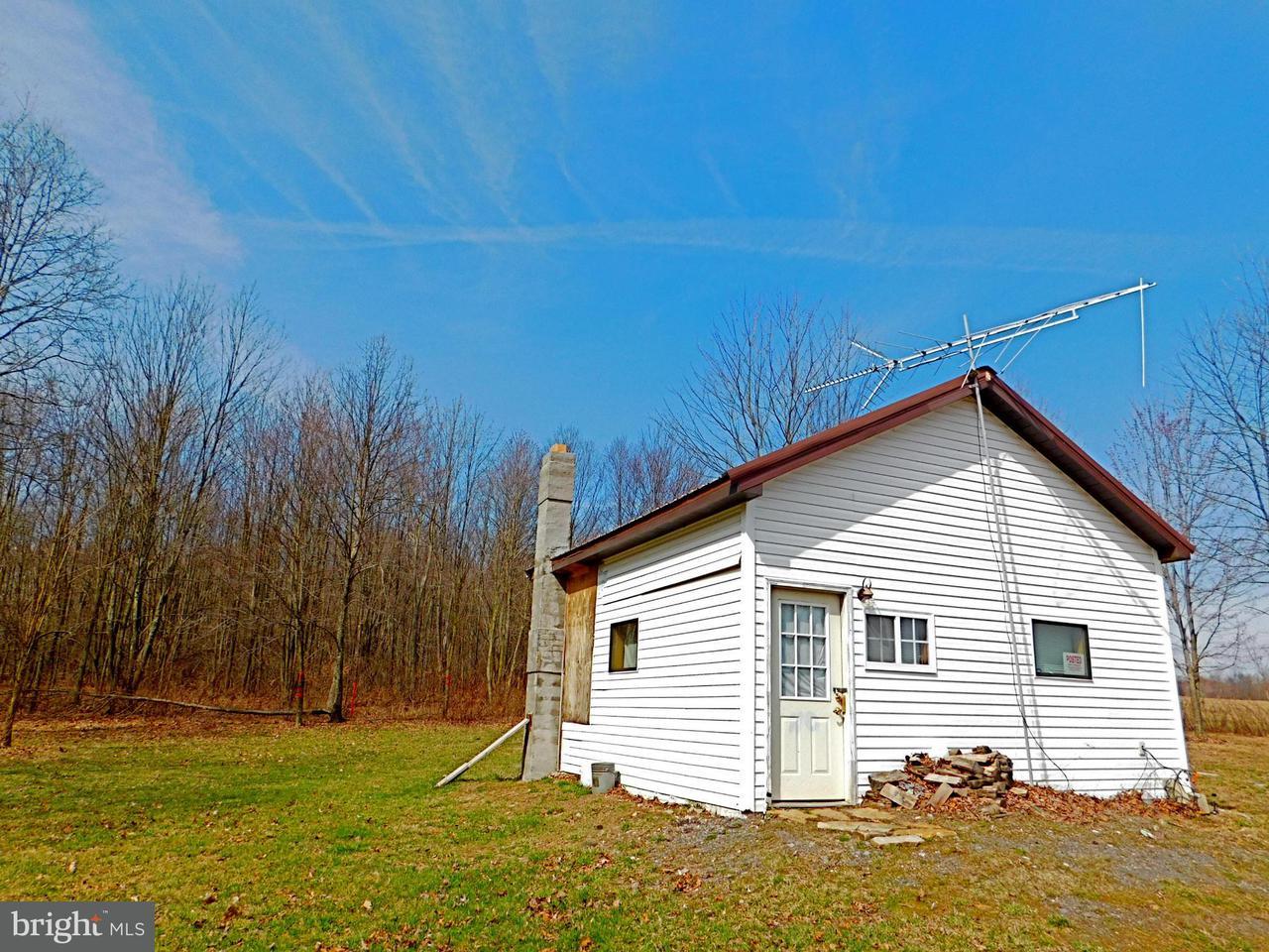 Land for Sale at Off Rt 1 Elk Garden, West Virginia 26717 United States