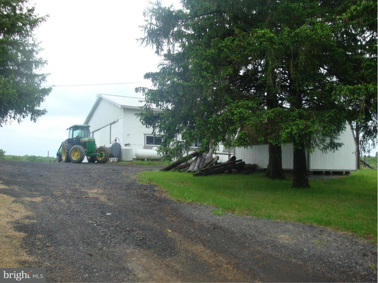 Farm for Sale at 15806 Bear Hill Rd SE Oldtown, Maryland 21555 United States