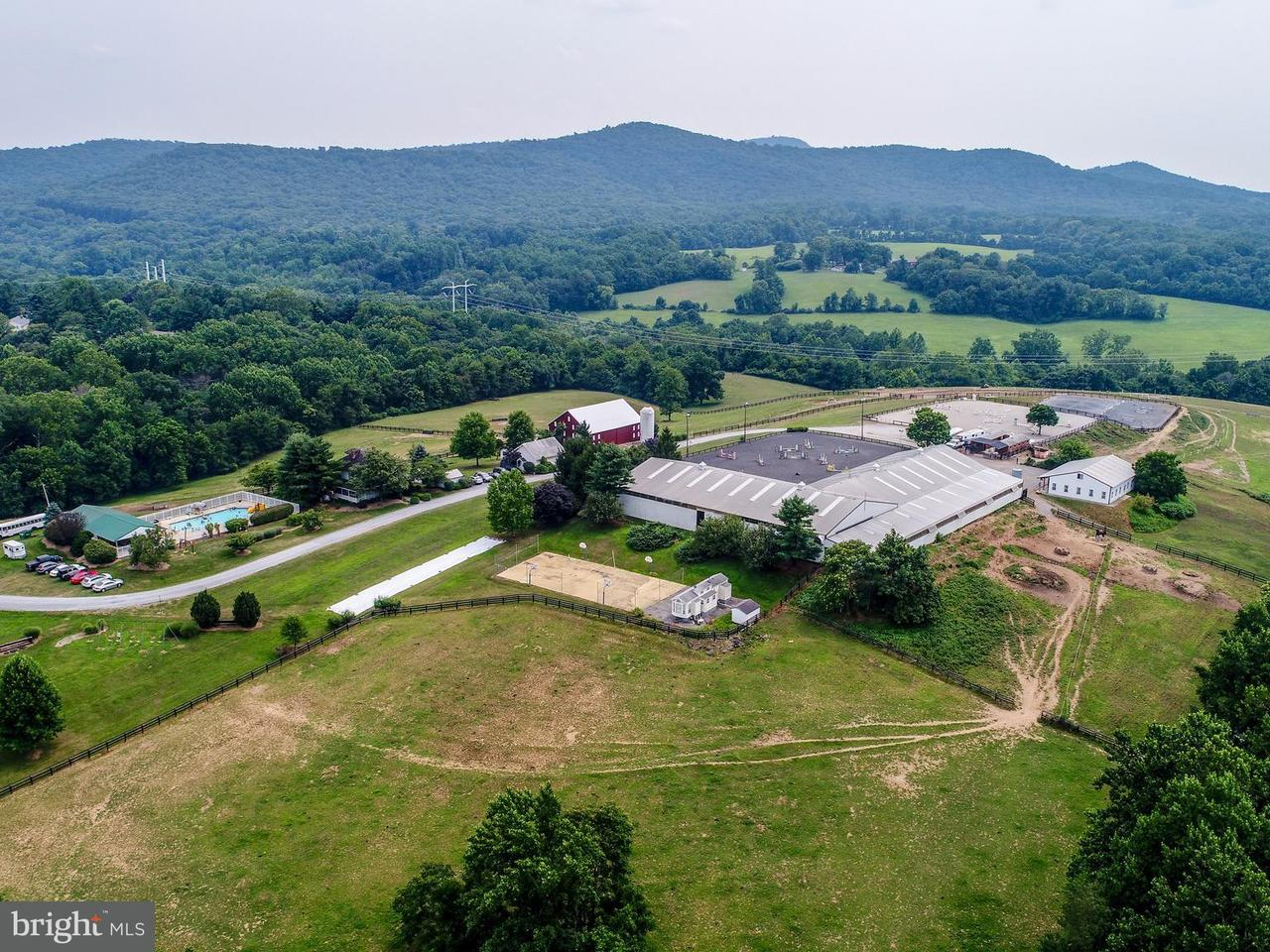 Farm for Sale at 2700 Roderick Rd Urbana, Maryland 21704 United States