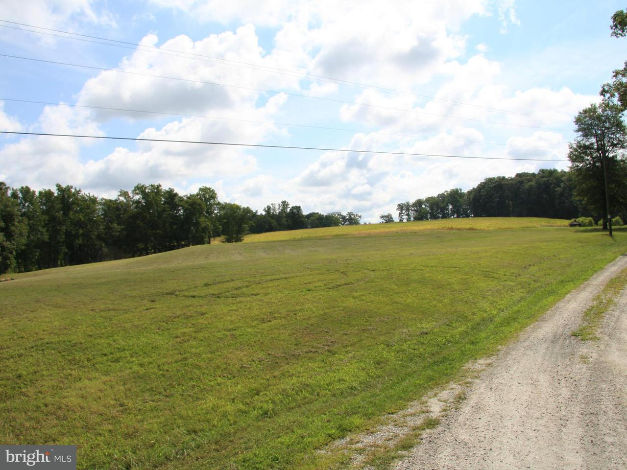Additional photo for property listing at James Madison Hwy  Fork Union, Virginia 23055 United States
