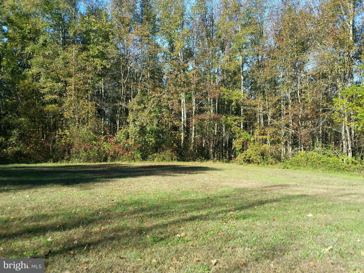 Land for Sale at 27050 Temple Rd Marydel, Maryland 21649 United States