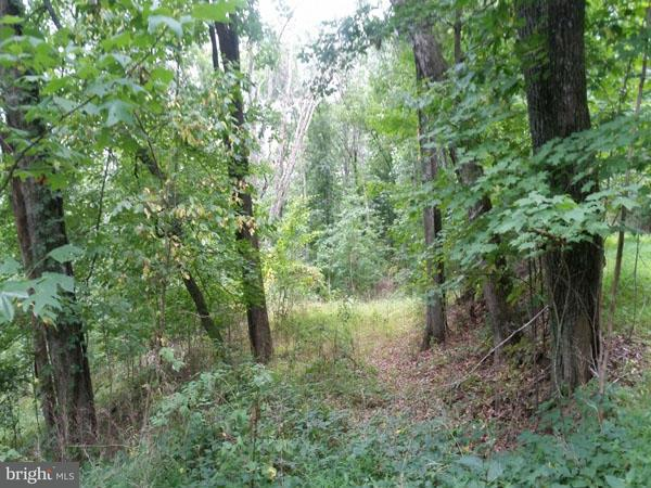 Additional photo for property listing at 0 Gap Avenue  Berkeley Springs, West Virginia 25411 United States