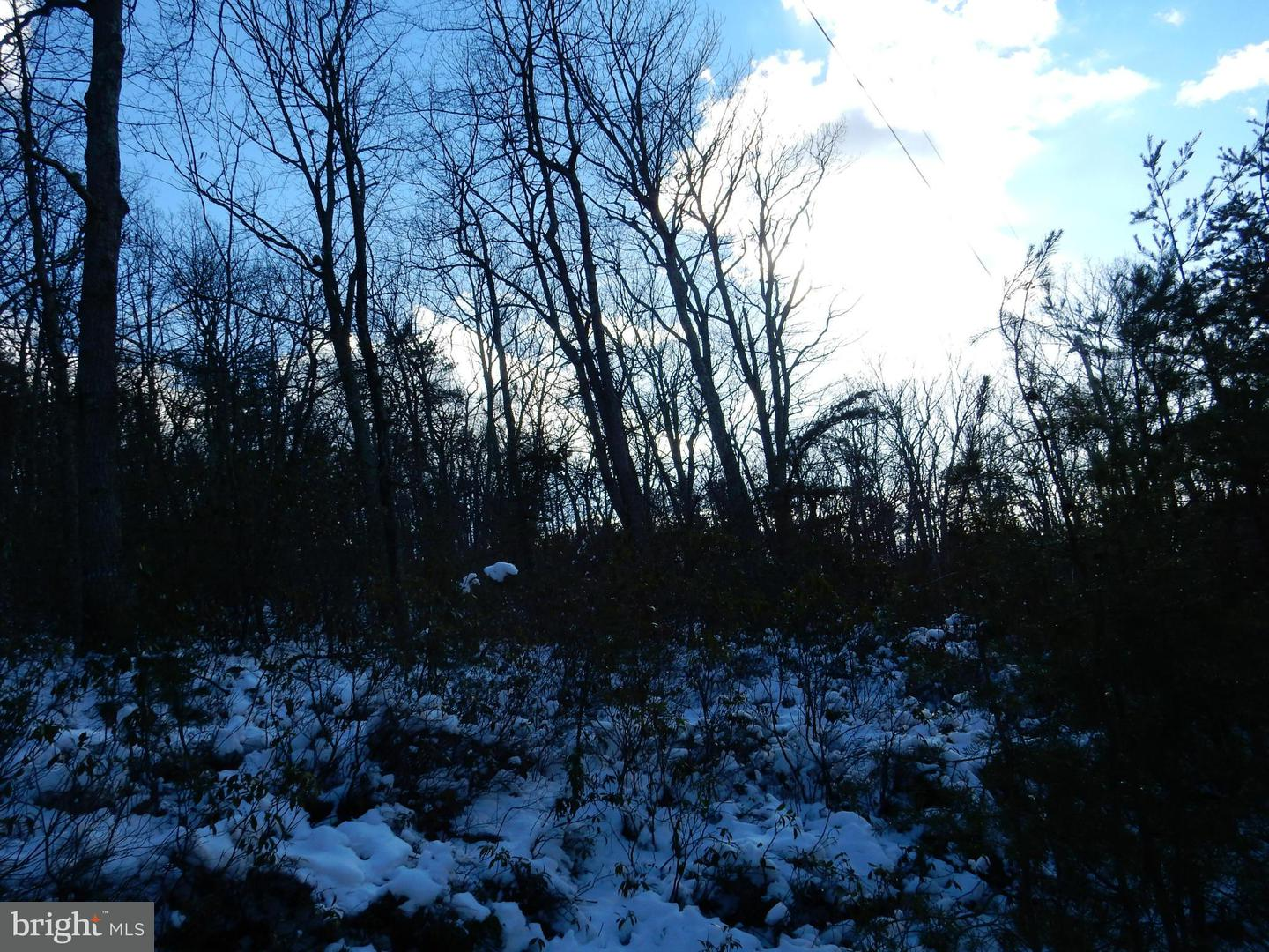 Land for Sale at 30 Virginia Pine Wardensville, West Virginia 26851 United States