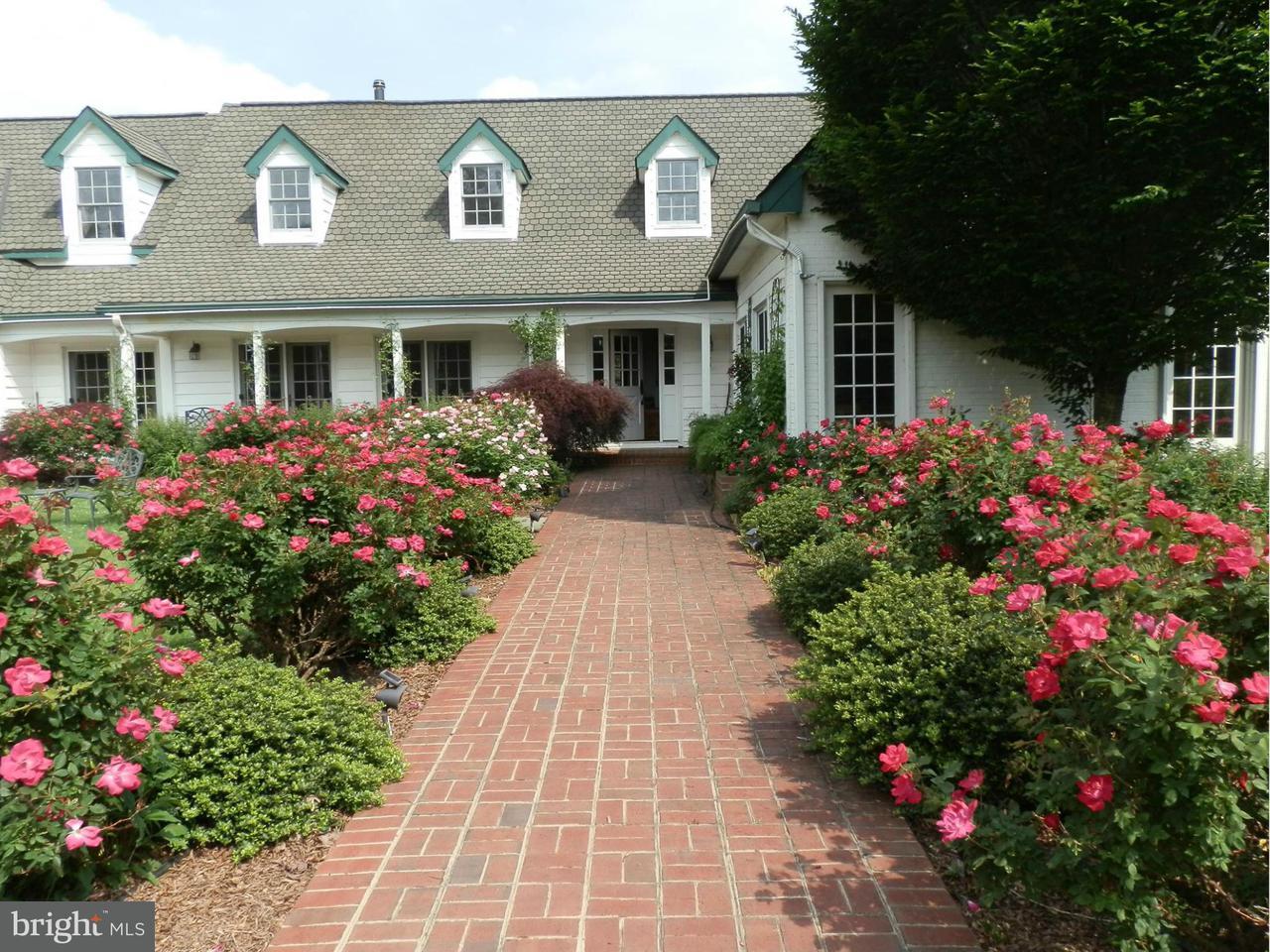 農場 為 出售 在 13310 Del Dios Way 13310 Del Dios Way Culpeper, 弗吉尼亞州 22701 美國
