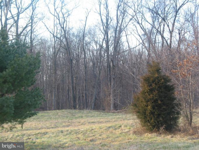 Land for Sale at 7072 Killarney Dr Fayetteville, Pennsylvania 17222 United States