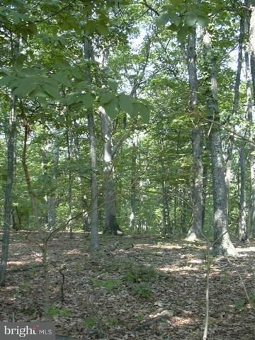 Land for Sale at 36 Sleepy Knolls Shanks, West Virginia 26761 United States