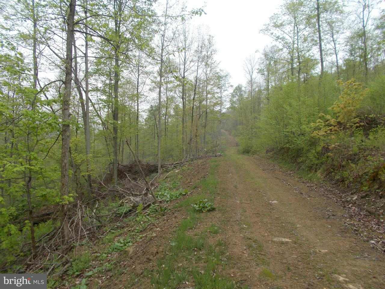 Land for Sale at Wellersburg Road Mount Savage, Maryland 21545 United States