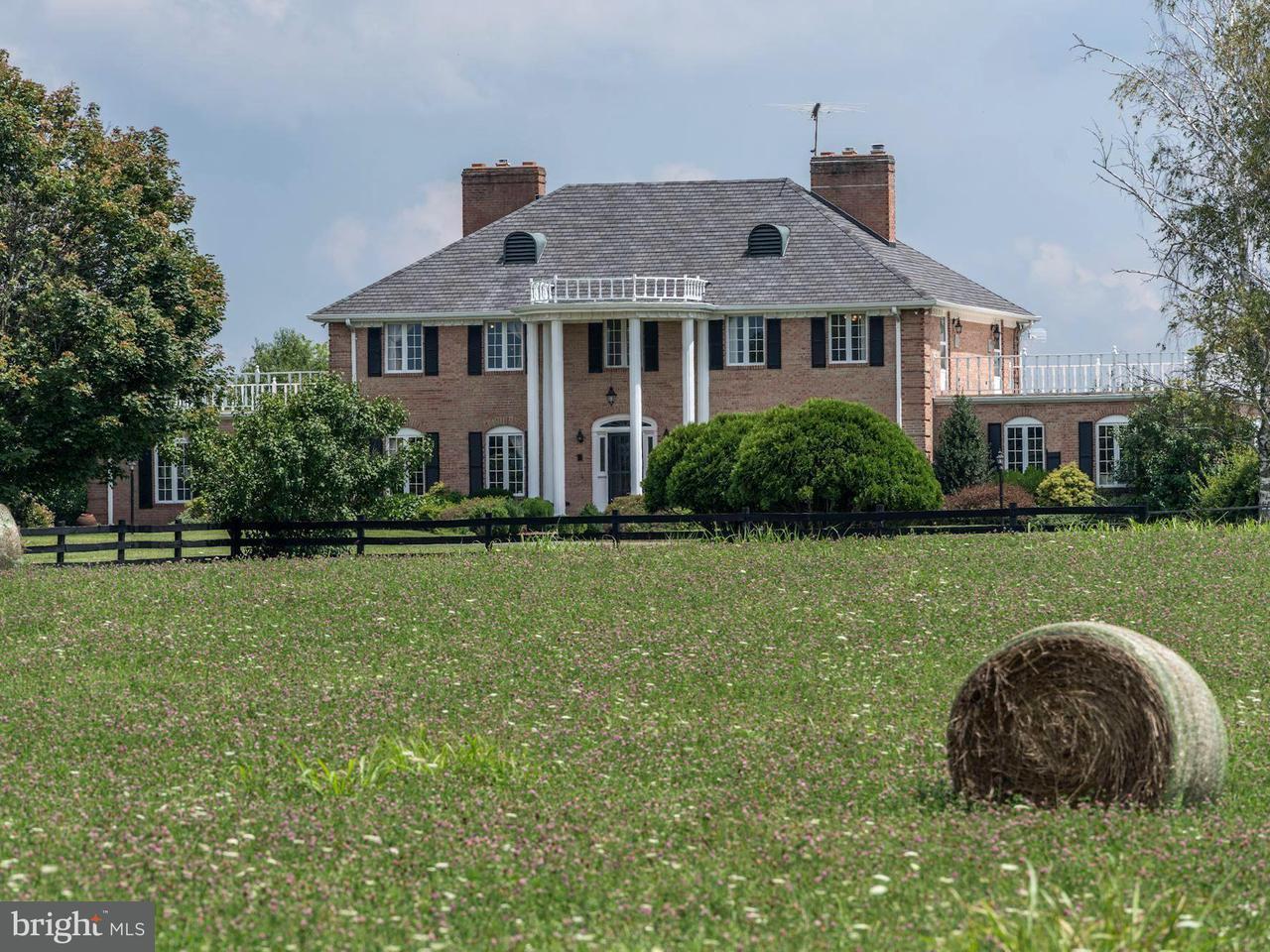 農場 のために 売買 アット Address Not Available Boyce, バージニア 22620 アメリカ合衆国