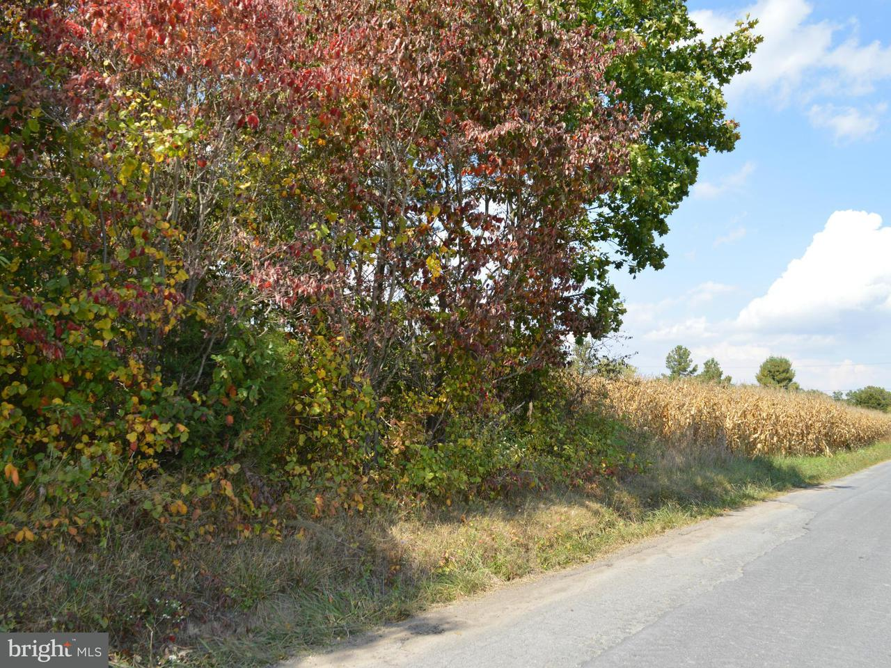 Land for Sale at 0 Tabor Rd Berkeley Springs, West Virginia 25411 United States