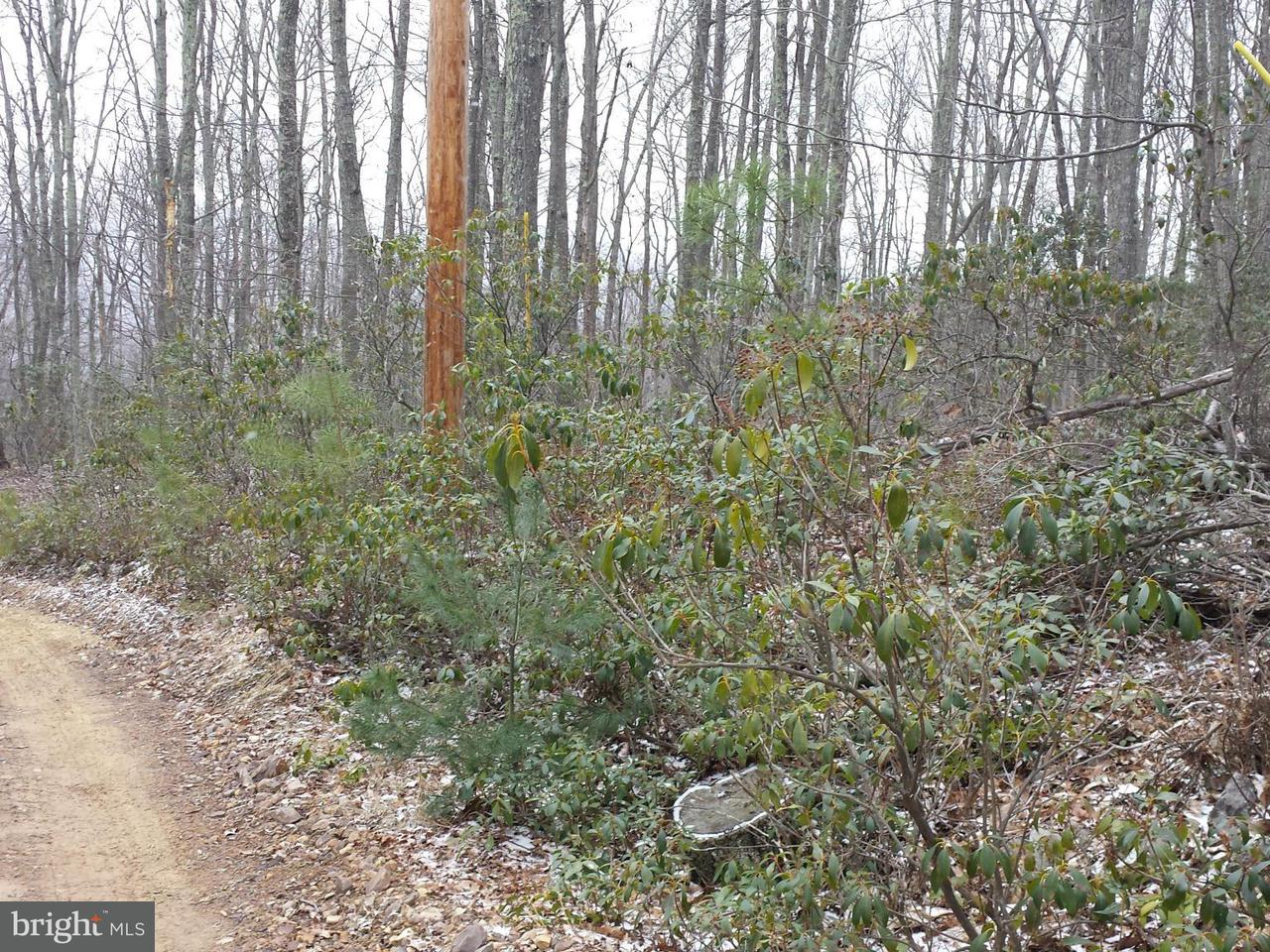 Land for Sale at 15 Cedarwood Dr Lost City, West Virginia 26810 United States