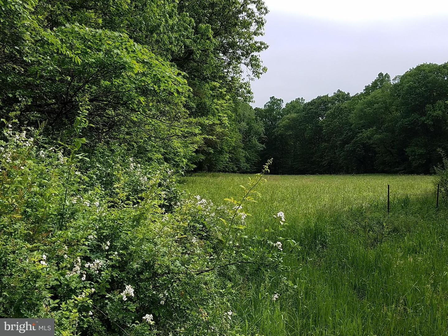 Land for Sale at Winchester Grade Rd Berkeley Springs, West Virginia 25411 United States
