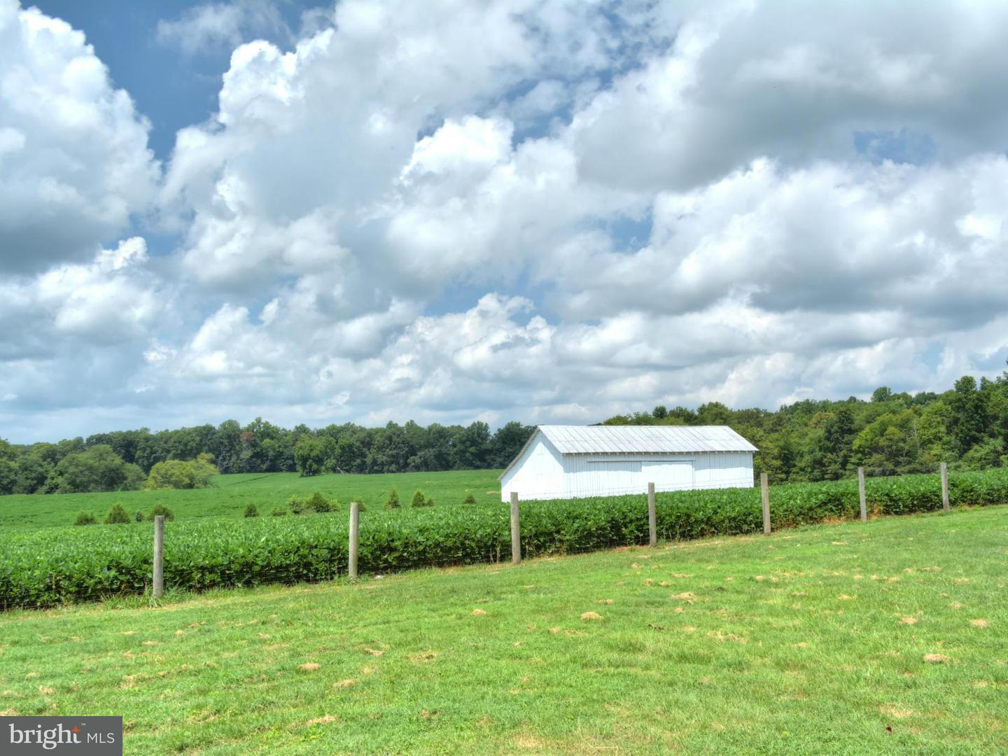 Land for Sale at 2285 Antioch Rd Scottsville, Virginia 24590 United States