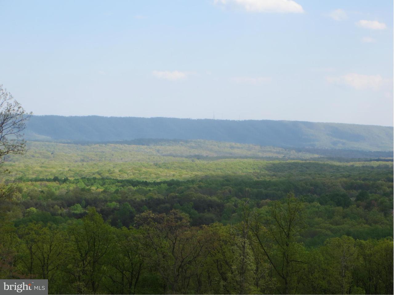 Land for Sale at Sachem Hill Hedgesville, West Virginia 25427 United States