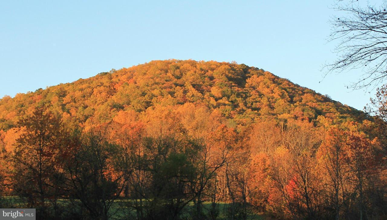 Land for Sale at 0 Eagles Nest Ln Castleton, Virginia 22716 United States