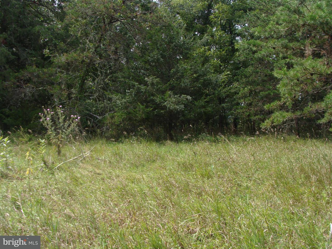 Land for Sale at Lot 8 West Ridge Dr Arthur, West Virginia 26847 United States