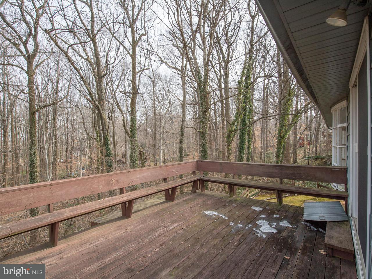 Additional photo for property listing at 4703 Dodson Drive 4703 Dodson Drive Annandale, Virginia 22003 Estados Unidos
