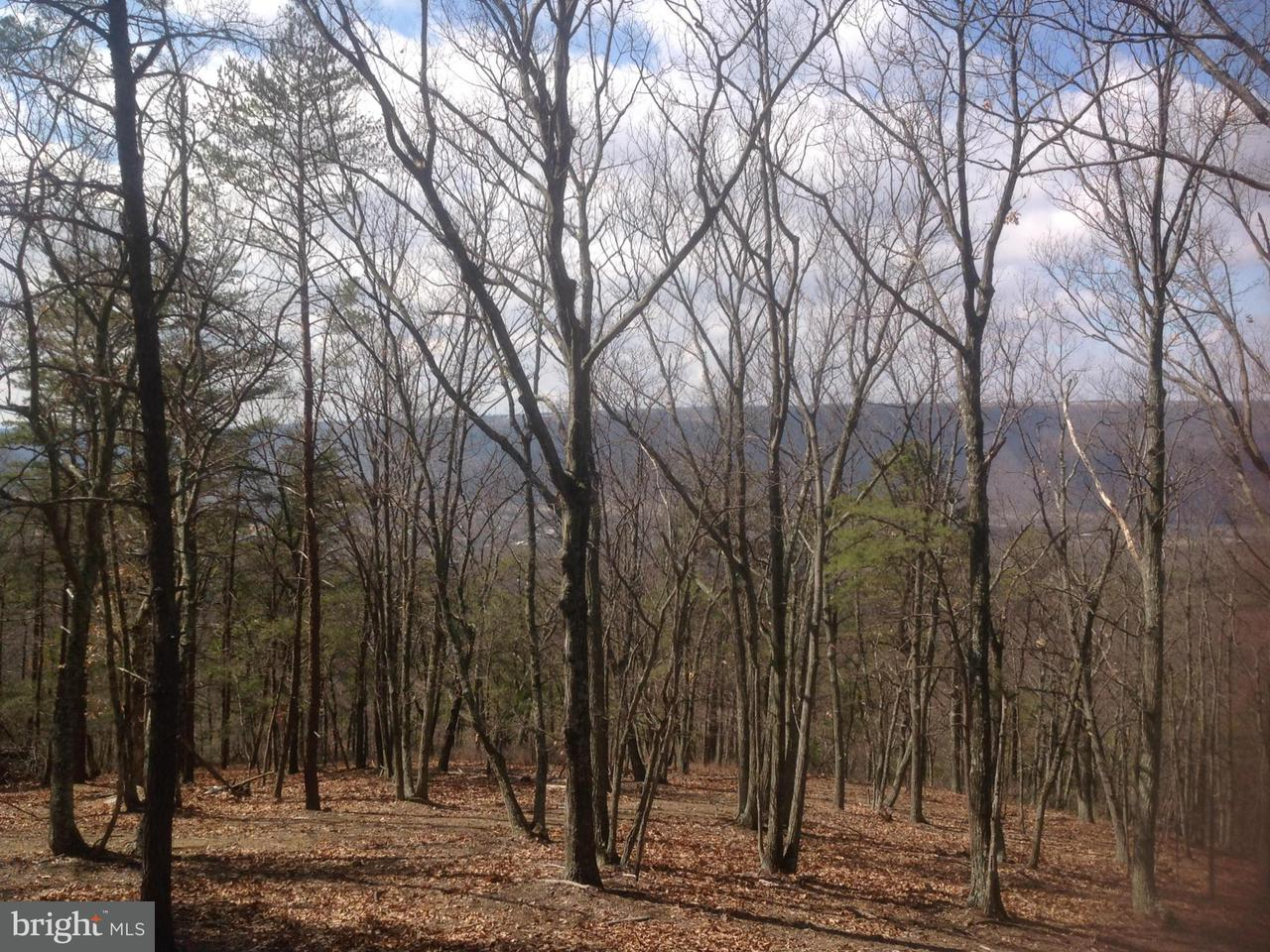 Additional photo for property listing at 6 Cardinal Ridge Est  Romney, West Virginia 26757 United States