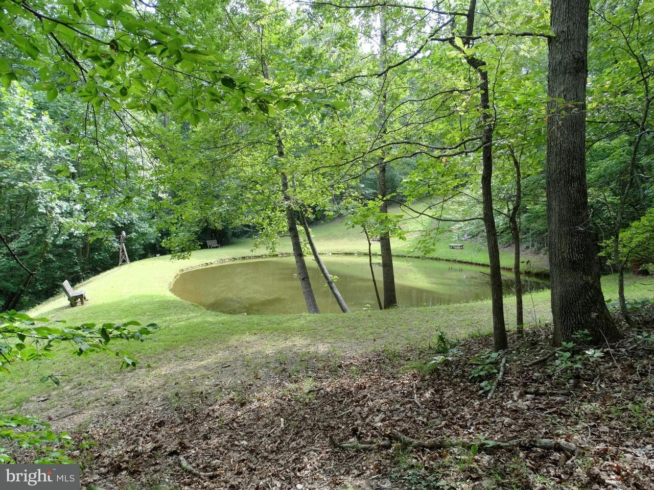 Land for Sale at Meander Run Rd Locust Dale, Virginia 22948 United States