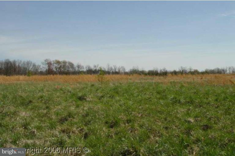 Land for Sale at 125 Perry Winkle Ln Fredericksburg, Virginia 22405 United States