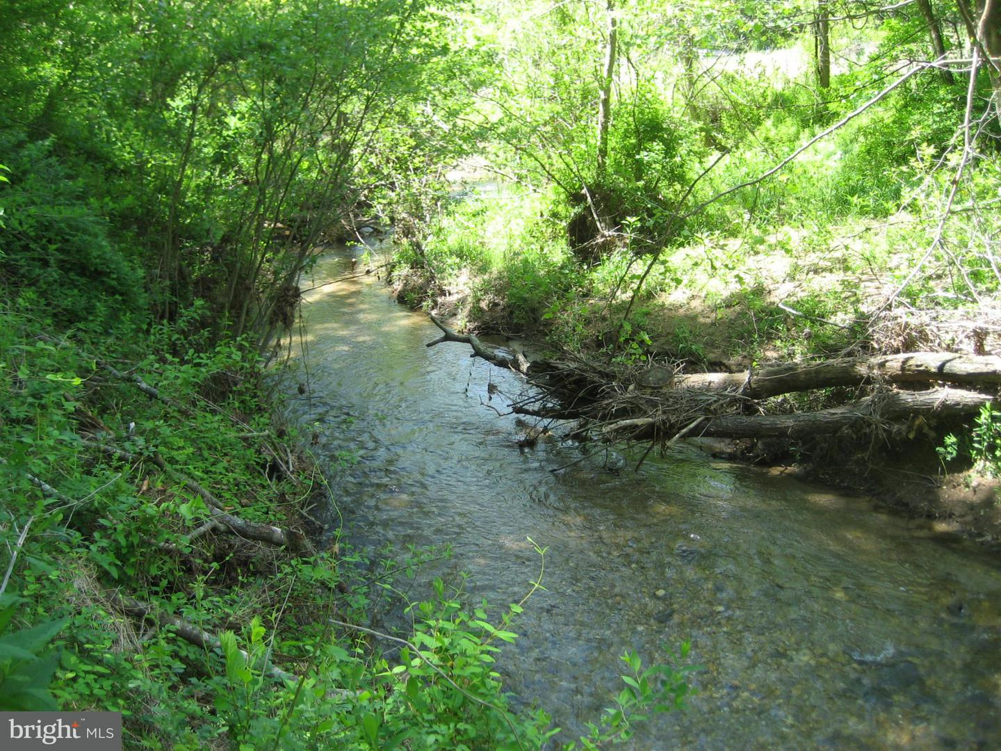 Land for Sale at Rt 231 Ft Valley Rd Banco, Virginia 22711 United States