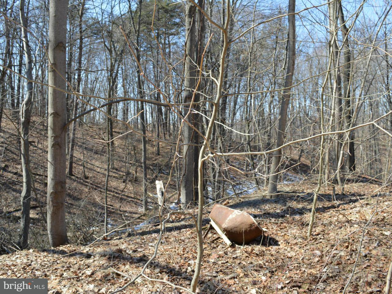 Land for Sale at Creek Rd Berkeley Springs, West Virginia 25411 United States