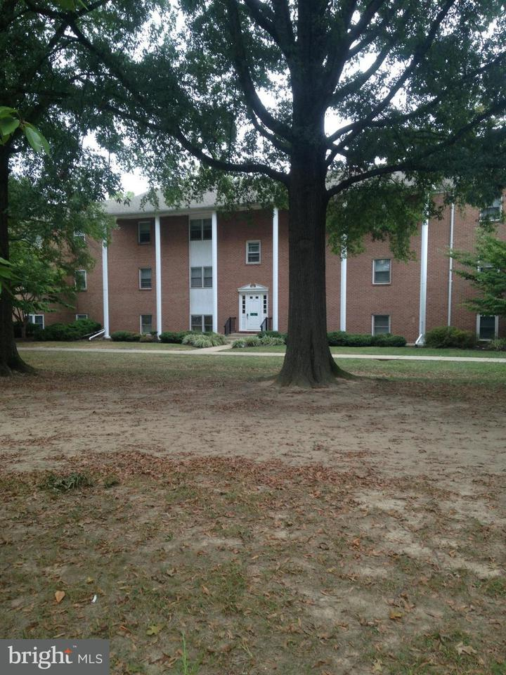 Condominium for Rent at 100 Hadaway Dr Chestertown, Maryland 21620 United States