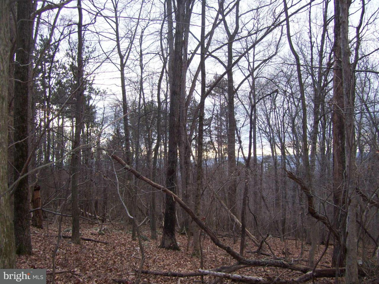 Land for Sale at Ridge Rd Frederick, Maryland 21702 United States