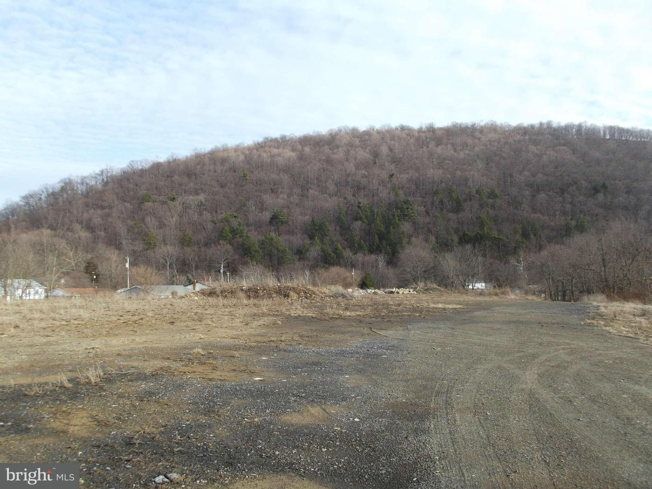 Land for Sale at Us Rt. 220 New Creek, West Virginia 26743 United States