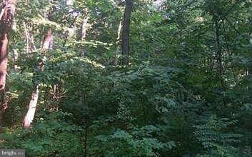 Land for Sale at 45 Riley Ct Front Royal, Virginia 22630 United States