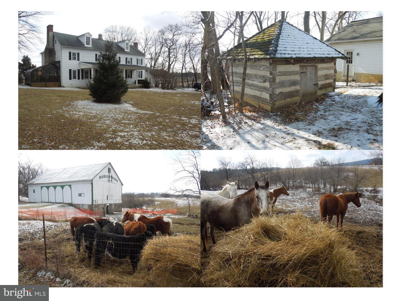 Farm for Sale at 1123c Jefferson Pike Knoxville, Maryland 21758 United States