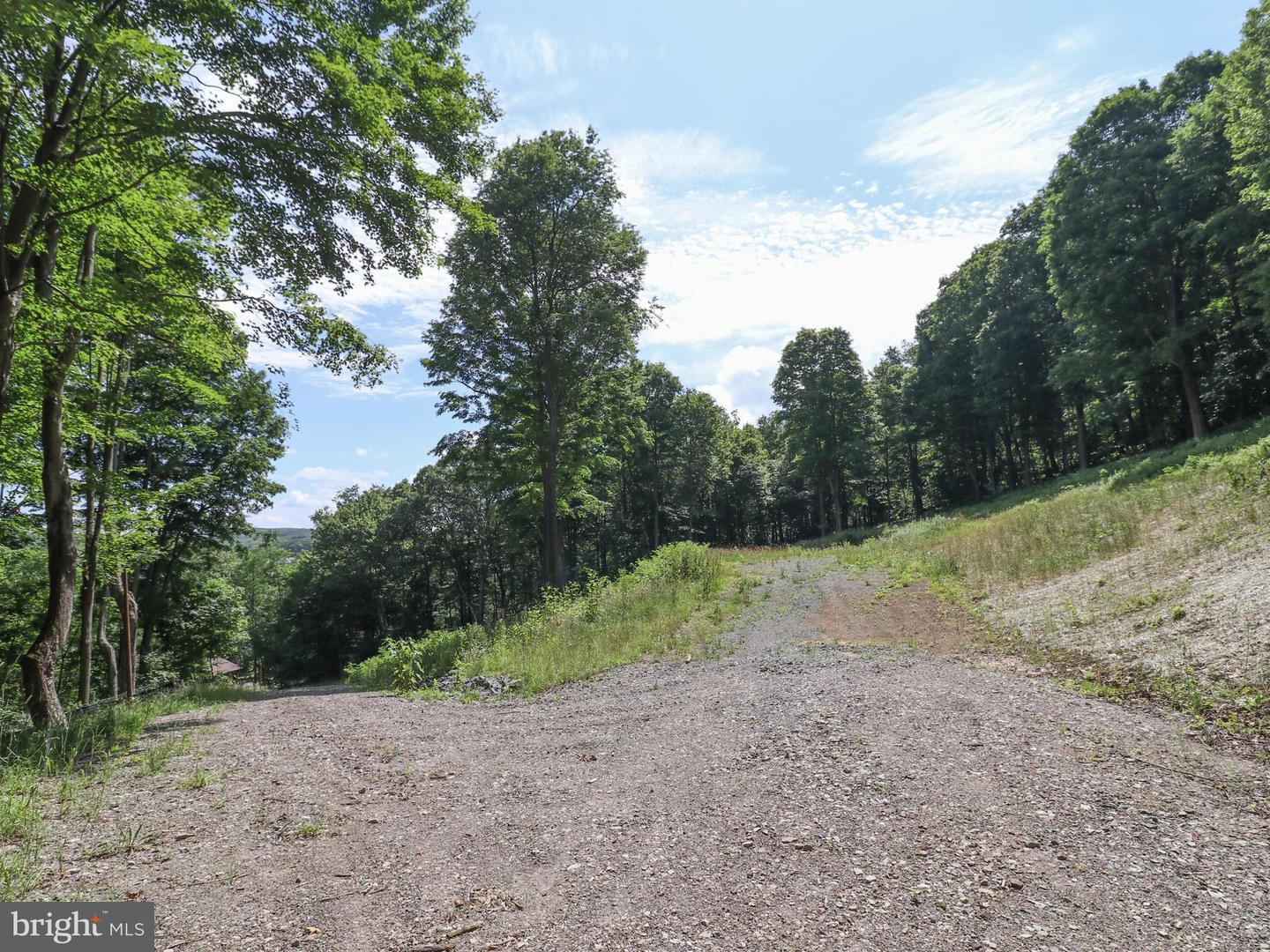 Land for Sale at 21 Gleanings Dr Sang Run, Maryland 21541 United States