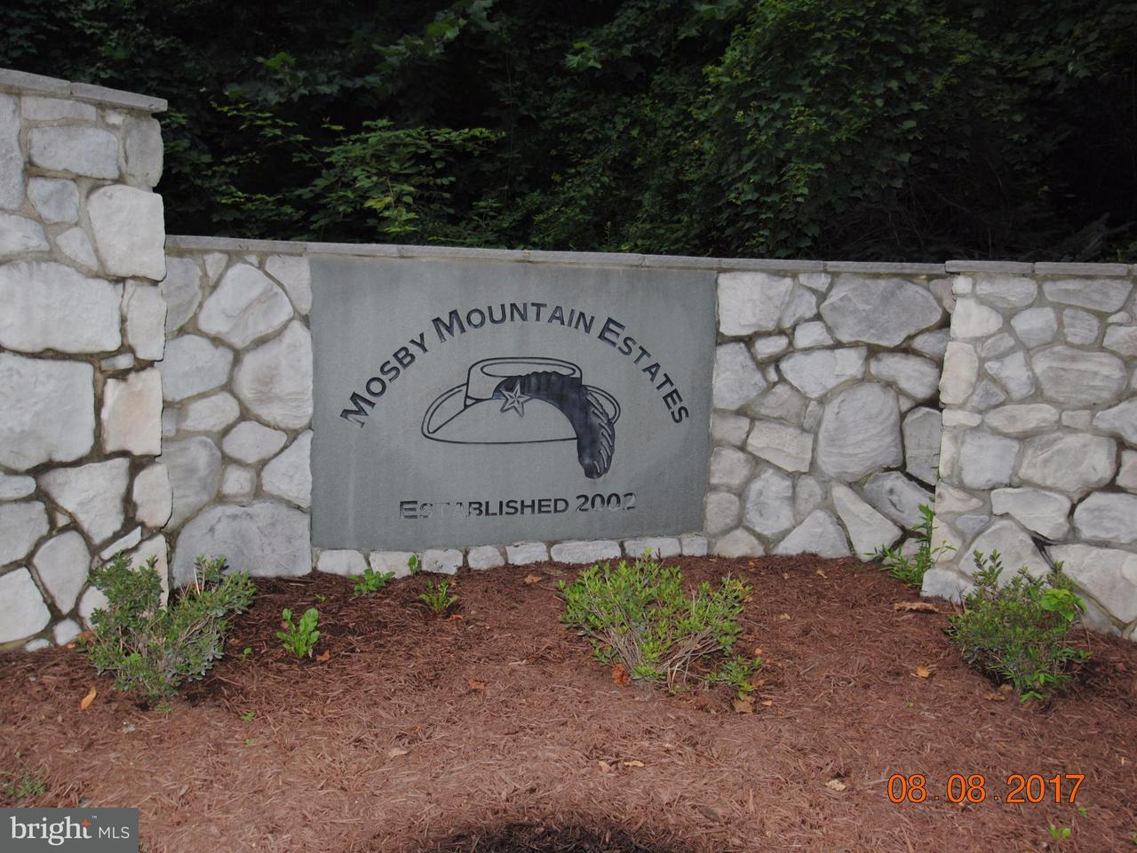 Land for Sale at Old Orchard Rd /cCc rR Linden, Virginia 22642 United States