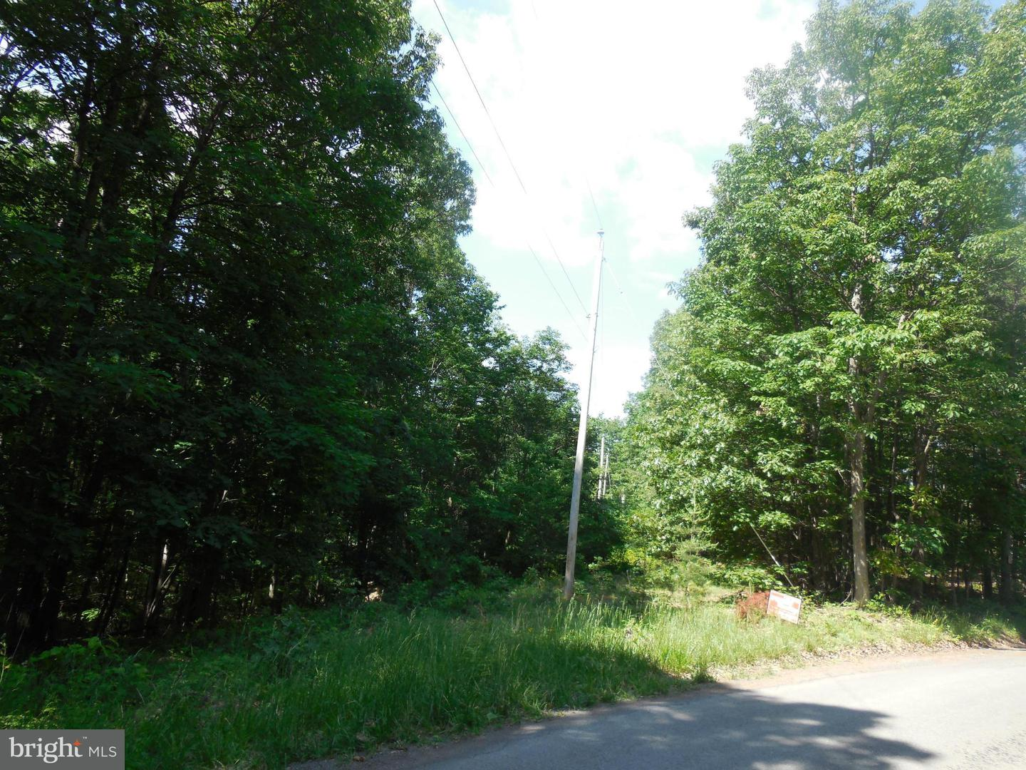 Land for Sale at Duckwall Rd Berkeley Springs, West Virginia 25411 United States