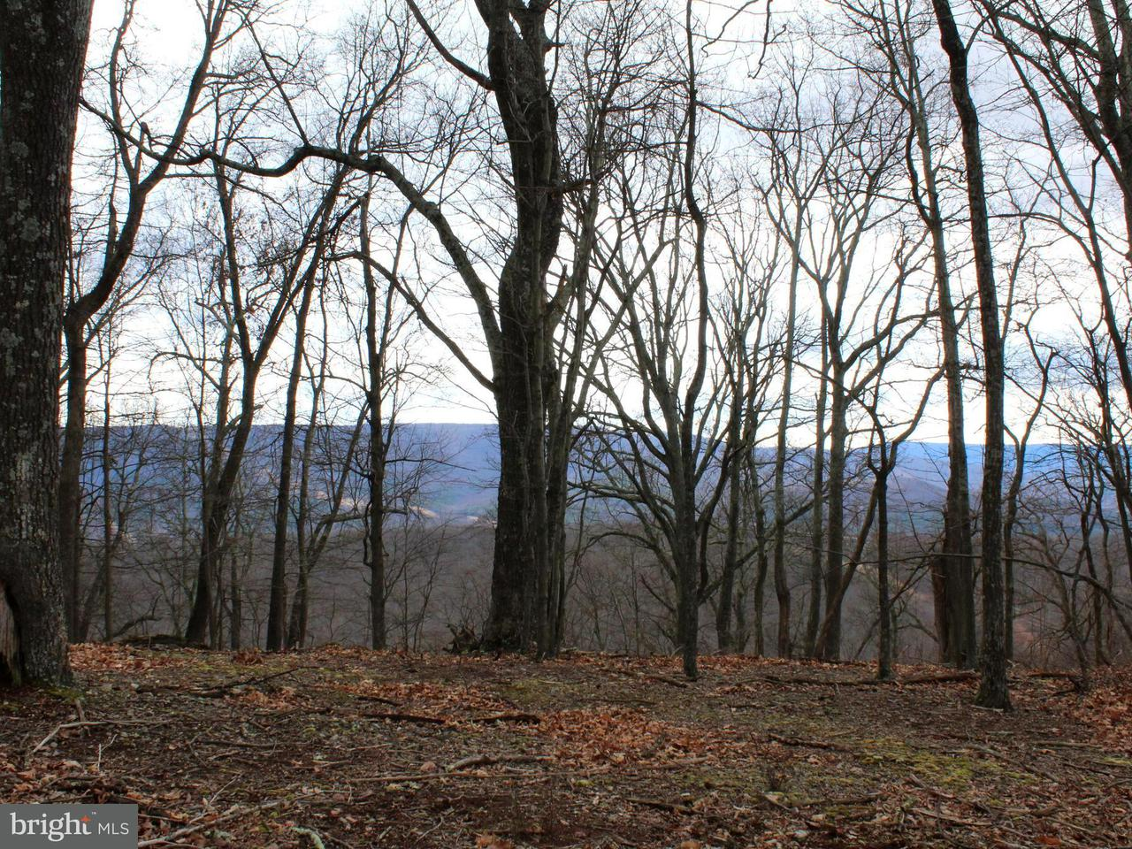 Land for Sale at Lot 3 Sec3 High Knob Rd Old Fields, West Virginia 26845 United States